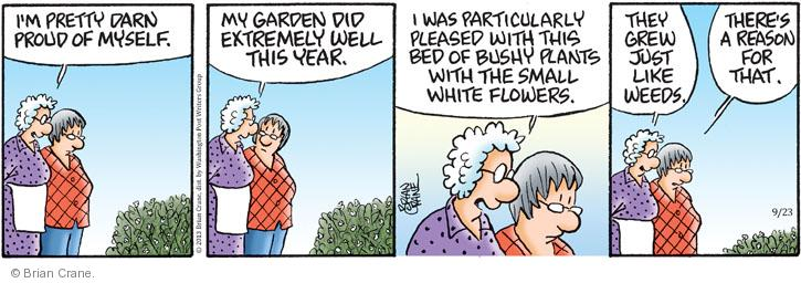 Comic Strip Brian Crane  Pickles 2013-09-23 gardening