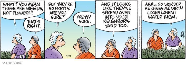 Comic Strip Brian Crane  Pickles 2013-09-24 too