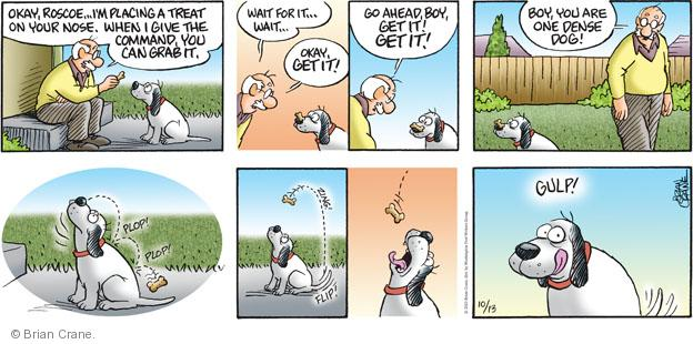 Comic Strip Brian Crane  Pickles 2013-10-13 dog training