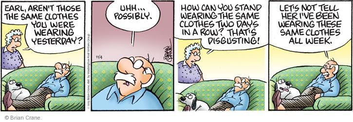 Comic Strip Brian Crane  Pickles 2013-11-04 garment