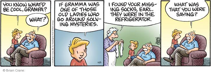 Comic Strip Brian Crane  Pickles 2013-11-06 case