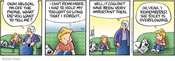 Comic Strip Brian Crane  Pickles 2013-11-14 emergency