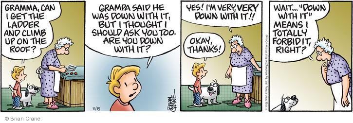Comic Strip Brian Crane  Pickles 2013-11-15 vernacular