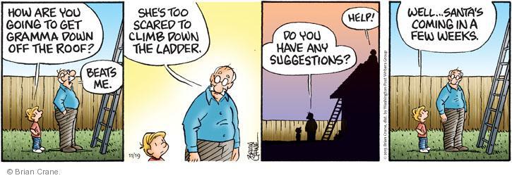 Comic Strip Brian Crane  Pickles 2013-11-19 fear