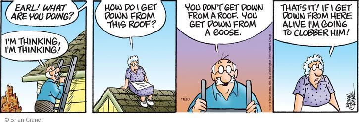 Comic Strip Brian Crane  Pickles 2013-11-20 tease