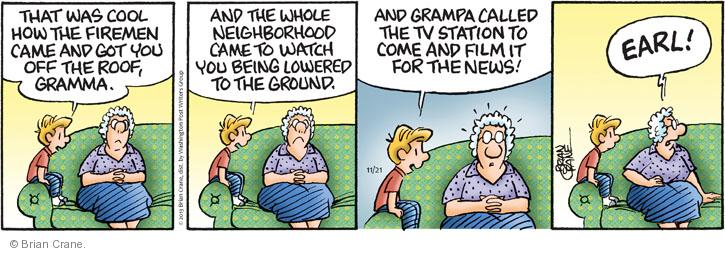 Comic Strip Brian Crane  Pickles 2013-11-21 public