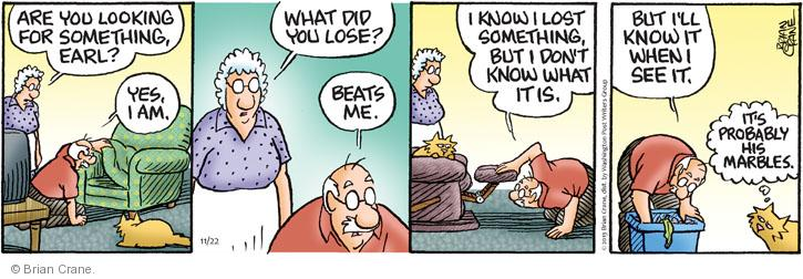 Comic Strip Brian Crane  Pickles 2013-11-22 lose
