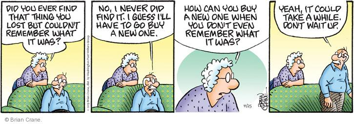 Comic Strip Brian Crane  Pickles 2013-11-25 no memory
