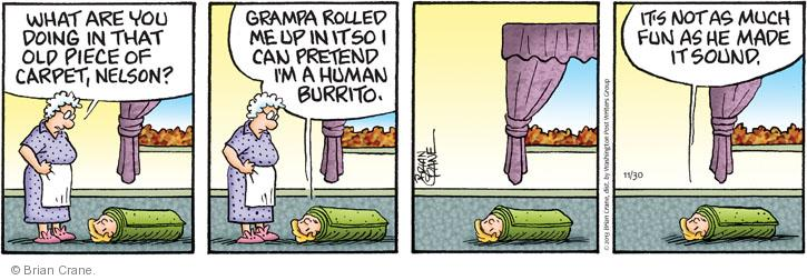Comic Strip Brian Crane  Pickles 2013-11-30 restrain