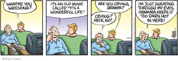 Comic Strip Brian Crane  Pickles 2013-12-24 movie