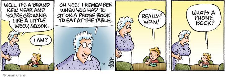 Comic Strip Brian Crane  Pickles 2014-01-01 New Year