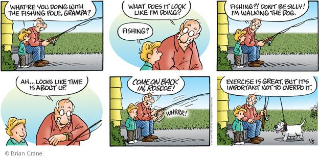 Comic Strip Brian Crane  Pickles 2014-01-05 exercise