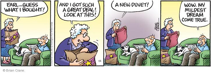 Comic Strip Brian Crane  Pickles 2014-01-06 husband and wife