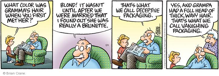 Comic Strip Brian Crane  Pickles 2014-01-11 husband and wife