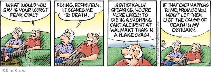 Comic Strip Brian Crane  Pickles 2014-01-15 fear