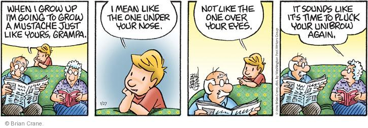Comic Strip Brian Crane  Pickles 2014-01-27 unibrow