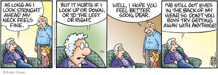 Comic Strip Brian Crane  Pickles 2014-01-30 back pain