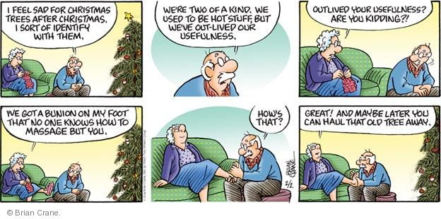 Comic Strip Brian Crane  Pickles 2014-02-02 Christmas tree