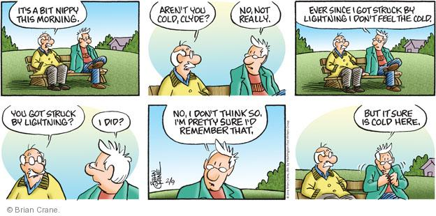 Comic Strip Brian Crane  Pickles 2014-02-09 memory