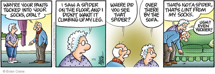 Comic Strip Brian Crane  Pickles 2014-02-15 spider