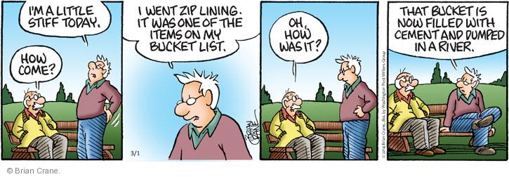 Comic Strip Brian Crane  Pickles 2014-03-01 recreational