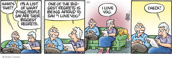 Comic Strip Brian Crane  Pickles 2014-03-03 husband and wife