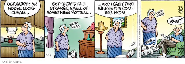 Comic Strip Brian Crane  Pickles 2014-03-29 strange