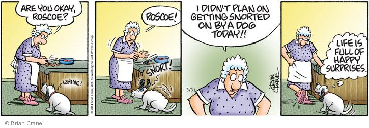 Comic Strip Brian Crane  Pickles 2014-03-31 get a life