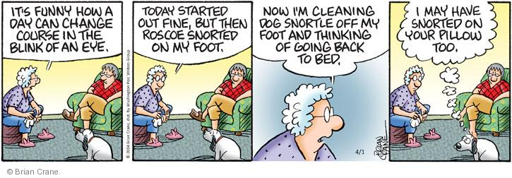 Comic Strip Brian Crane  Pickles 2014-04-01 pillow