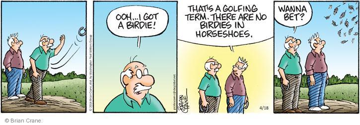 Comic Strip Brian Crane  Pickles 2014-04-18 sport