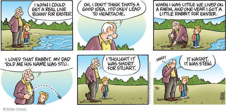 Comic Strip Brian Crane  Pickles 2014-04-20 meat