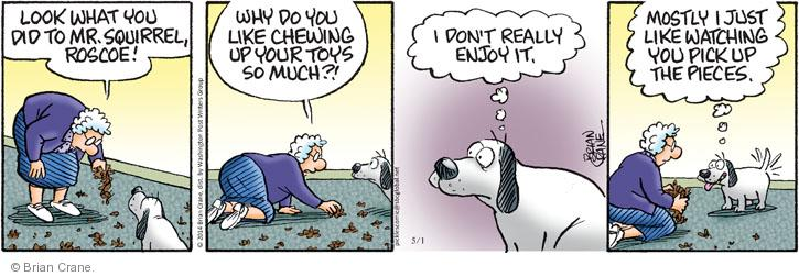 Comic Strip Brian Crane  Pickles 2014-05-01 chew toy
