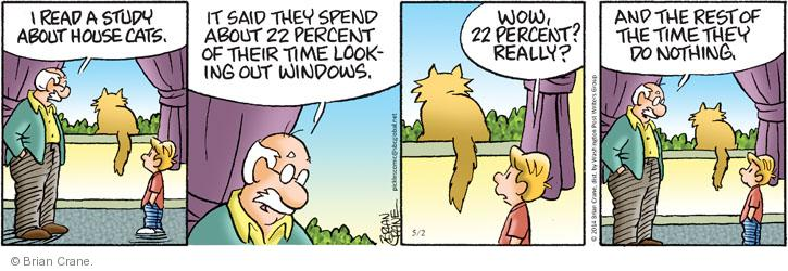 I read a study about house cats. It said they spend about 22 percent of their time looking out windows. Wow, 22 percent? Really? And the rest of the time they do nothing.