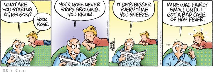 Comic Strip Brian Crane  Pickles 2014-05-19 allergy