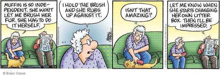 Comic Strip Brian Crane  Pickles 2014-06-05 cat fur