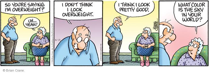 Comic Strip Brian Crane  Pickles 2014-06-13 fat