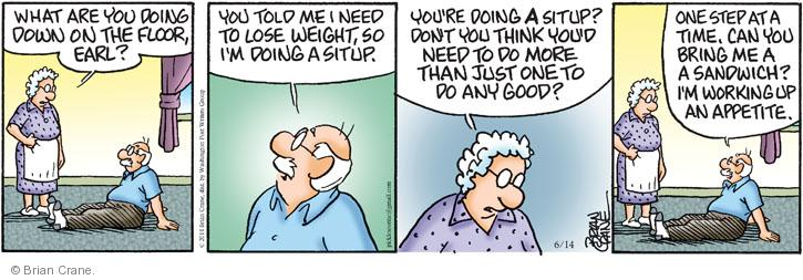 Comic Strip Brian Crane  Pickles 2014-06-14 bring