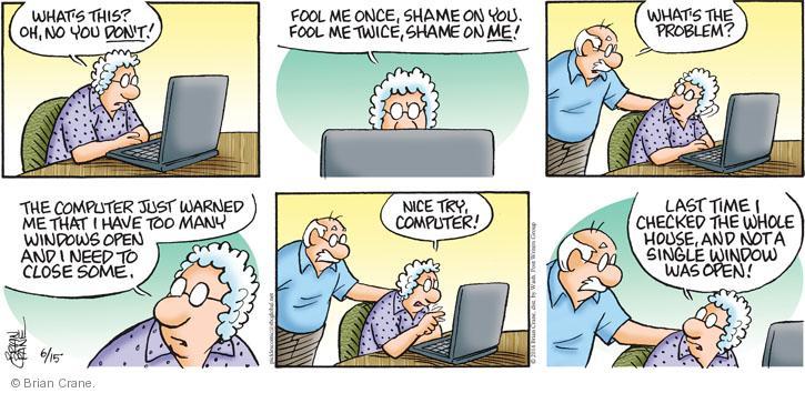 Comic Strip Brian Crane  Pickles 2014-06-15 warn