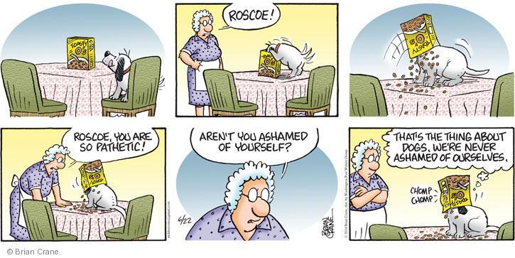 Comic Strip Brian Crane  Pickles 2014-06-22 shame