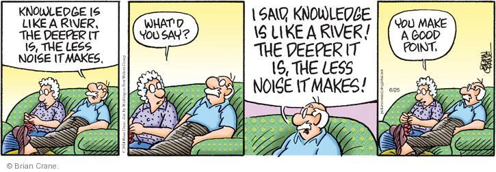 Comic Strip Brian Crane  Pickles 2014-06-25 good point