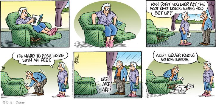 Comic Strip Brian Crane  Pickles 2014-07-06 recliner