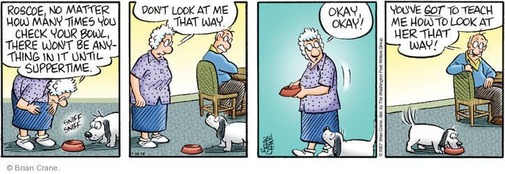 Comic Strip Brian Crane  Pickles 2014-07-18 check