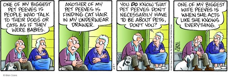 Comic Strip Brian Crane  Pickles 2014-07-22 cat hair