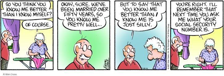 Comic Strip Brian Crane  Pickles 2014-07-25 husband and wife