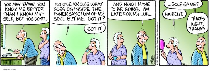 Comic Strip Brian Crane  Pickles 2014-07-26 relationship