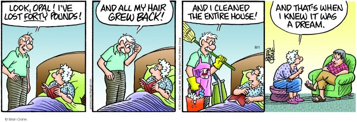 Comic Strip Brian Crane  Pickles 2014-08-01 baldness