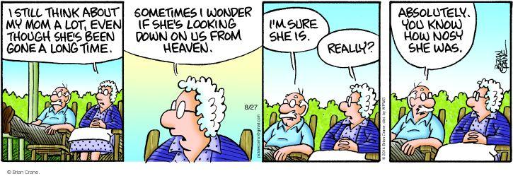 Comic Strip Brian Crane  Pickles 2014-08-27 remembrance