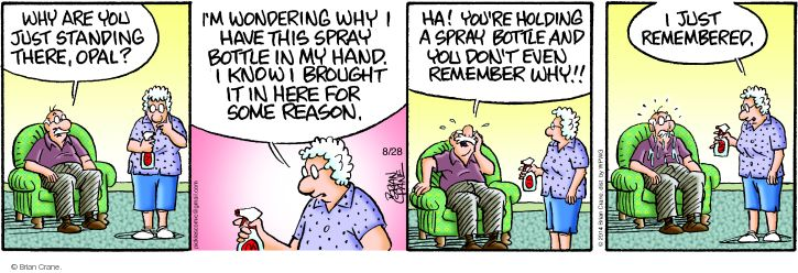 Comic Strip Brian Crane  Pickles 2014-08-28 forgetfulness