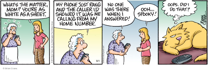Comic Strip Brian Crane  Pickles 2014-09-01 one