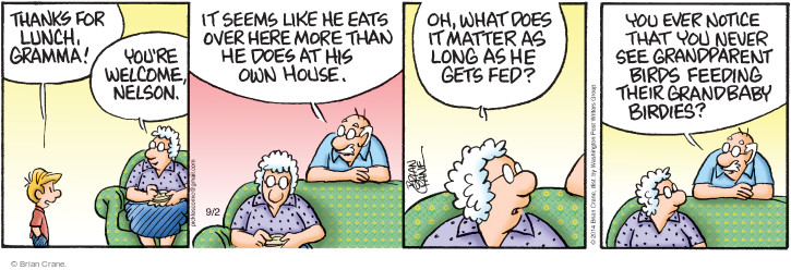 Comic Strip Brian Crane  Pickles 2014-09-02 bird